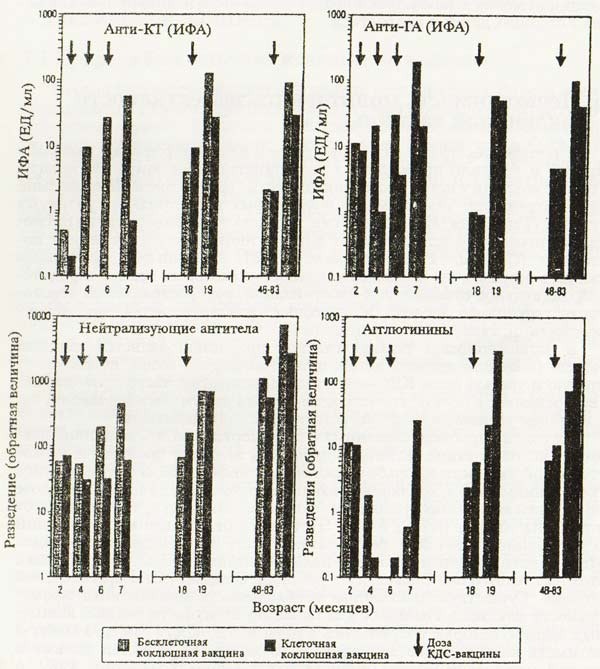 Иммунный ответ (средние геометрические титров антител) на бесклеточный и клеточный коклюшный компонент...