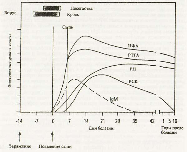 Иммунологический ответ на острую коревую инфекцию