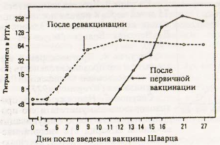 Иммунный ответ после вакцинации и ревакцинации серонегативных детей